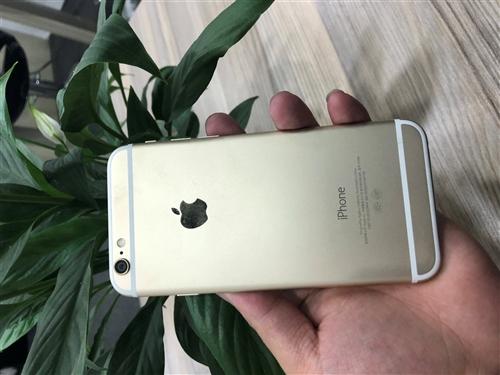 蘋果6 32g金色 外觀98新 用了半年 價格1180 有問題可以質保 可以分期0首付