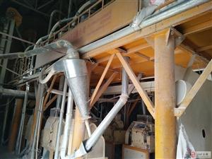 面粉厂面粉加工设备