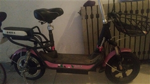 全新,粉色,两轮电动车,金城铃木,锂电池耐用,带充电器