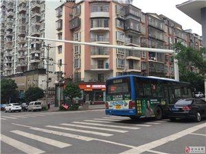 档案馆处人行道十字路口,公交车占道影响视线履发车祸,为什么交警不帖罚单?