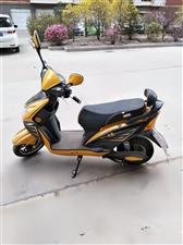 小鸟电动车,售价1000元。喜欢的可以骑走。