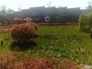 现代农业园