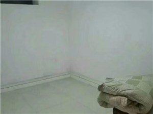 玫瑰苑1室1厅1卫500元/月