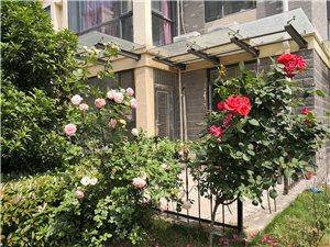 城市花园独栋带院3室2厅2卫135万元