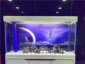 水族之家魚缸批發零售