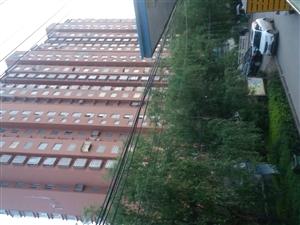 滨河花苑2室2厅1卫