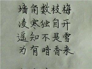 文龙书法培训