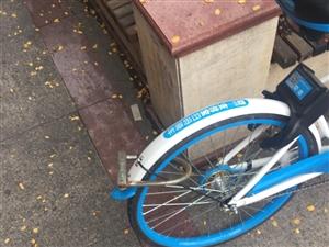 有人把共享单车变为私人单车