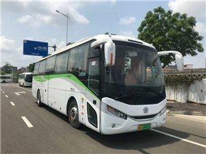 儋州有银隆电动旅游46座大巴出租