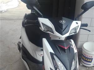 全新豪顺电摩60v800w刚骑了两天,还有个爱玛电动自行车现在能跑三十公里,电摩我是2900买的现在...