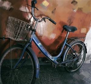 桦南林业局可以直接骑走的自行车