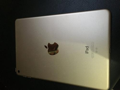�茬疆iPadmini4����浠讳�������64g���ㄥ�存��姝e父纾�纰般����浠讳�����