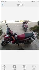 本人有一弯梁摩托车低价出售,车况良好,车在舟曲县内,可以方面试车,联系电话18706926584微信...