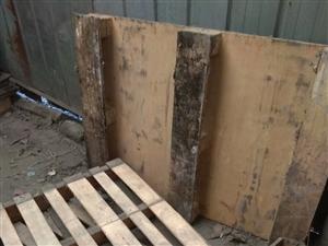 出售使用中的木托盘几十个,25元一个,有需要者来电13475071107