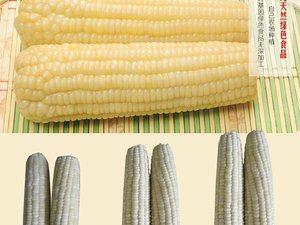 有路冷凍鮮花生,帶皮糯玉米熱銷