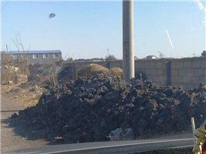 垃圾成堆,影响新城市形象