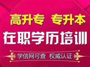 济宁2018年成人高考函授提升学历顺利拿证