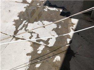 地税局院内下水道堵了,污水到处流,没人管