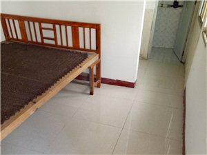 私房出租1室1卫300元/月