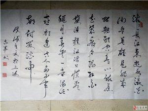 张志军书法集