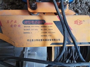 微型电动葫芦用二十多天。