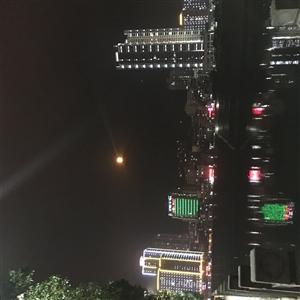 724564小赵