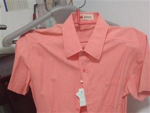 新的短袖衫,给二子买的没相中,现白菜价处