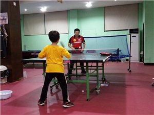 专业一对一乒乓球训练