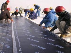 專業承接防水工程