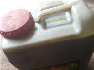 农村自家产自榨纯正菜籽油,除了自己吃的,还剩一百五十斤左右!现在出售,都是今年新油!按市场价出售,十...