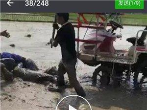 2018年5月31号安徽省霍邱县新店镇茅桥村发生一件令人发指的打人事件,茅桥村庙塘队人赵守明的两位儿