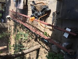 钢管梯子,6米高53公分宽,非常结实耐用。家中重盖房子闲置下来,有需要的朋友可以联系我!家中老人无力...