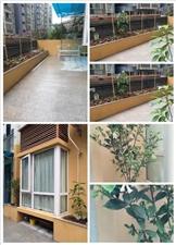 奉中花园2室2厅1卫1350元/月