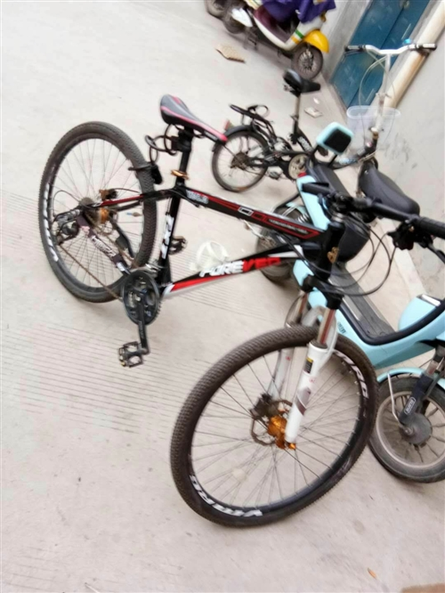永久自行车,买来2个多月,买时1400元,很少骑,成色杠杠的,有发票,可刀,喜欢的朋友来,澄县看车