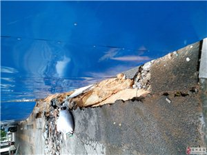 排水沟坍塌无人管理影响居民