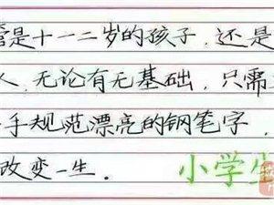 睢县晨轩五天练好钢笔字暑假报名优惠活动开始啦!