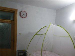人大住宅楼(骆驼岭超市院里)2室1厅1卫250元/月