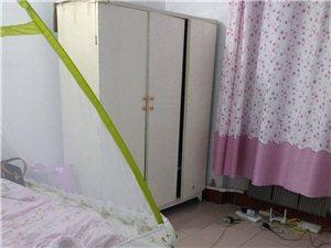 人大住宅楼2室1厅1卫250元/月