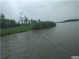 丰都在北岸规划一个生态园