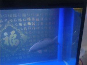 刚买2月,九层新,1米5宽60,上下过滤遥控器鱼缸,带一条50多公分锦鲤鱼。联系人136898586...