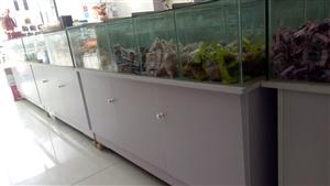 食品柜,长1.2米,宽0.6米,高0.8米。一共8个,每个10个食品格,下面是4个万向轮。有意者请联...