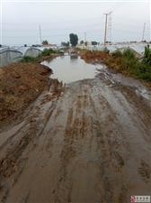 德农超市至水长流加油站路段,今后的路将这样走过