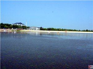 七月桃源湖