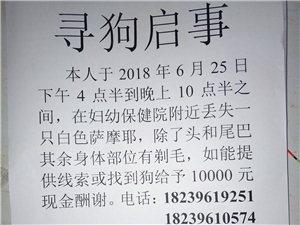 本人于2018年6月25日在新蔡縣婦幼保