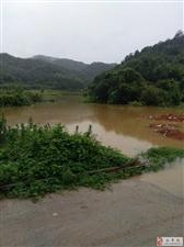 永丰县三坊乡宗溪村孤江受连雨影响江水爆涨淹没庄稼阻断道路