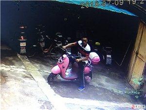 夹江偷车贼清晰图片都来看看
