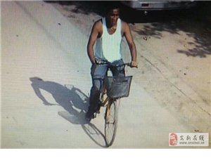 7月10日下午此人在九级村盗窃一位年仅七十几岁老人的养老钱导致老人着急上火血压升高求转发发现可疑人马