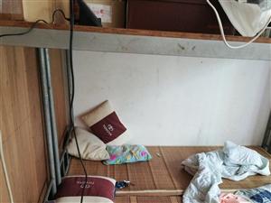 30张水管自焊学生床出售。