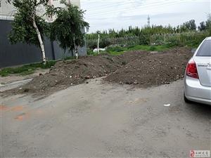 小区里的绿化垃圾就放在居民道路上