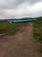 本人有120亩地出租水电齐全可养殖有要的联系可分租